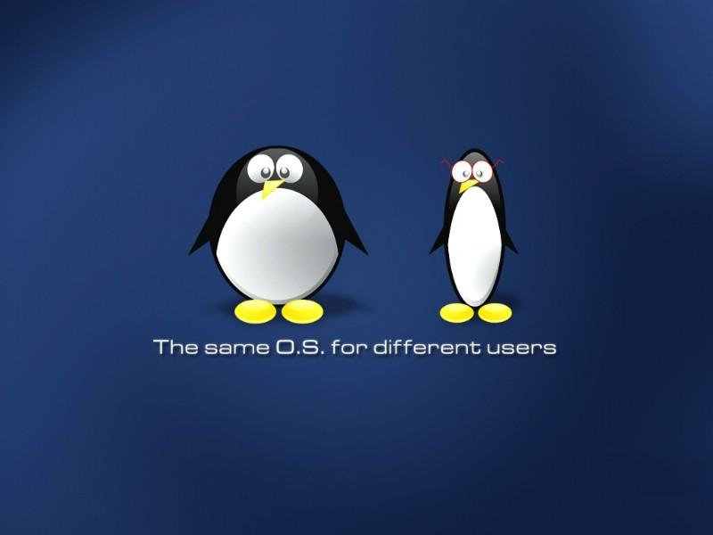 Linux不能ping外网  linux无法连接外部网站