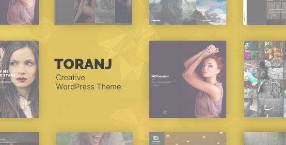 WordPress全屏幻灯展示摄影主题Toranj